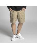 Dickies Shorts Buckner kaki