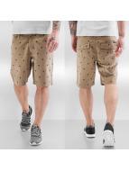 Dickies Shorts Pixley khaki
