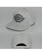 Dickies Snapback Cap Oakland grigio