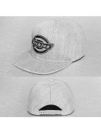Dickies Snapback Caps Oakland grå