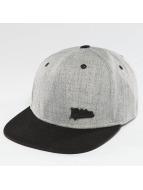 Dickies Snapback Caps Murrysville szary