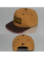 Dickies Snapback Jamestown hnedá