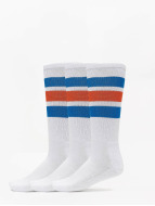 Dickies Socks Atlantic City 3-Pack white