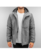 Dickies Winterjacke Scottsburg grau