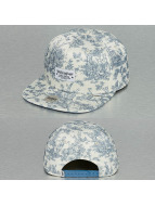 Djinns snapback cap 6P We Love Ugly blauw
