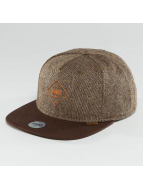 Djinns snapback cap Spotted Gum bruin
