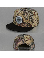 Djinns snapback cap C P Hedge groen