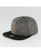 Djinns snapback cap Spotted Gum zwart