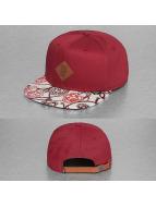 Djinns Snapback Caps 6P Birds czerwony