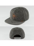 Djinns Snapback Caps Spotted Gum grå
