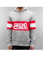 Ecko Unltd. Hoodie Flagship grey