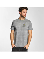 Electric T-Shirt WILD SOULS gray