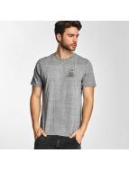 Electric T-Shirt WILD SOULS grey