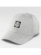 Element Snapback Cap Classic Treelogo grau