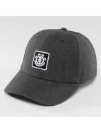 Element Snapback Cap Treelogo gray