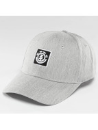 Element Snapback Caps Classic Treelogo grå