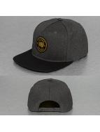 Globe snapback cap Tiger zwart