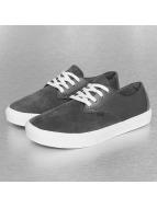 Globe Sneaker Motley LYT grau