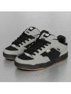 Globe Sneaker Scribe grigio