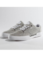 Globe Sneakers Mojo Legacy gray