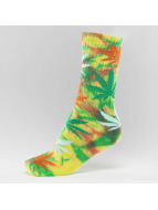 HUF Chaussettes Plantlife Strains Crew multicolore