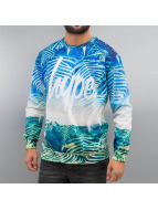 HYPE Pullover Wilderness Aop multicolore
