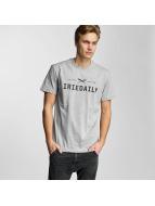 Iriedaily T-Shirt Class 94 Logo grau