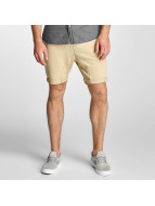 jorBasic Shorts Brown...