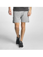 Jack & Jones Shorts jcoWill grau