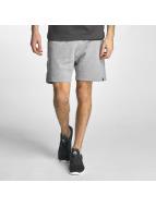 Jack & Jones shorts jcoWill grijs