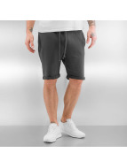 Jack & Jones Shortsit jjorToby harmaa