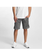 Jordan Short 23 Tech Dry grey
