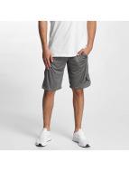 Jordan Shorts 23 Tech Dry grå