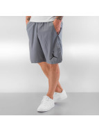 Jordan Shorts Training grau