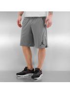 Jordan Shorts 23 Tech Dry gris