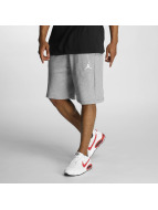 Jordan Shorts Flight gris