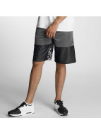 Jordan Shorts Wings Blockout gris