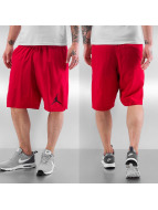 Jordan Shorts Training röd