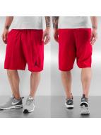 Jordan Shorts Training rouge
