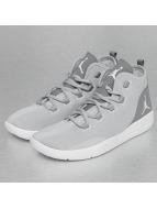 Jordan Sneaker Reveal grau