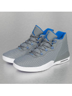 Jordan sneaker Academy grijs