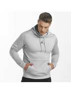 Jordan Sweat capuche Therma 23 Alpha Training gris