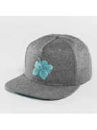 Hawaiian Snapback Cap Gr...