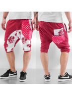 Palms Shorts Red...