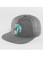 Just Rhyse snapback cap Palm Desert grijs