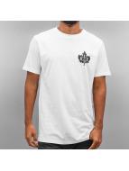K1X T-paidat Roy valkoinen
