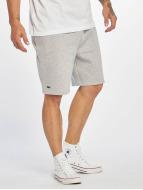 Lacoste Classic shorts Classic grijs