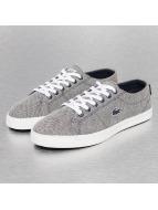 Lacoste Sneaker Marcel Lace 216 1 SPJ blau