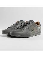 Lacoste sneaker Chaymon grijs