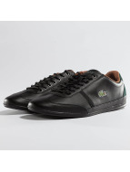 Lacoste Sneakers Misano Sport 317 CAM sihay